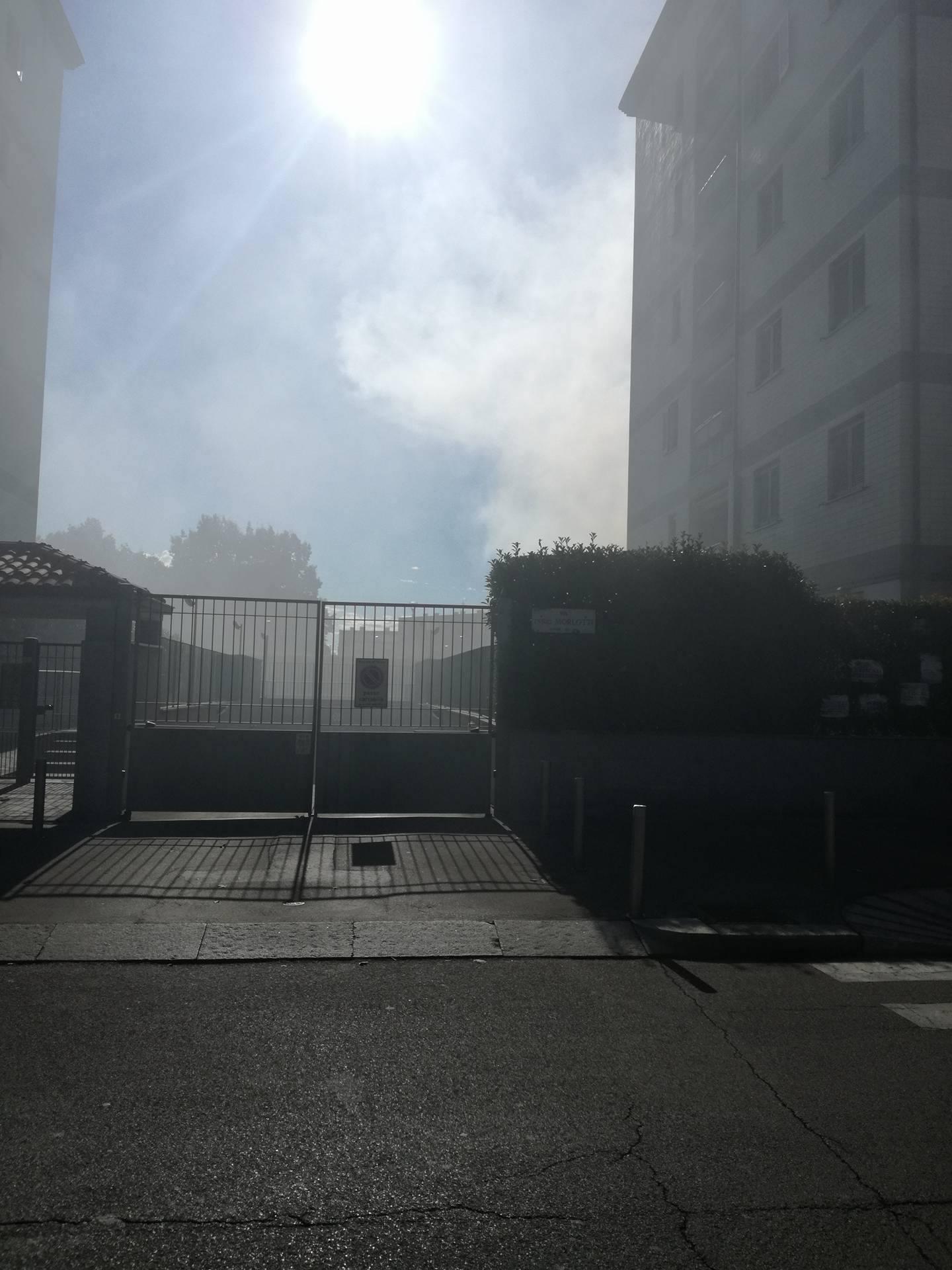 incendio_bruzzano_al_25_luglio_2017